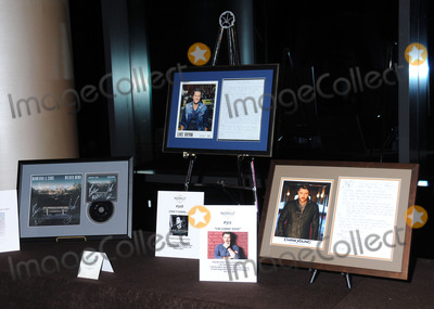 Auction Items Photo - 29 February 2016 - Nashville Tennessee - Auction Items TJ Martell Foundation 8th Annual Nashville Honors Gala held at the Omni Hotel Photo Credit Laura FarrAdMedia