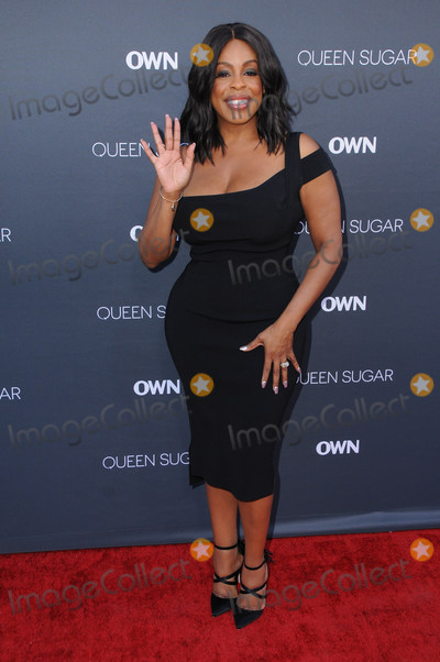 Niecy Nash Photo - 29 August 2016 - Burbank California Niecy Nash Premiere of OWNs Queen Sugar held at Warner Bros Studio Lot Photo Credit Birdie ThompsonAdMedia