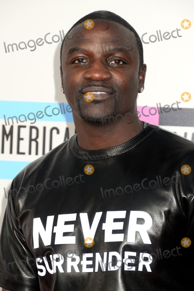 Akon Photo - 24 November 2013 - Los Angeles California - Akon 2013 American Music Awards - Arrivals held at Nokia Theatre LA Live Photo Credit Byron PurvisAdMedia