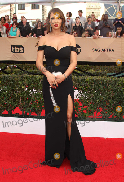 Jackie Cruz Photo - 29 January 2017 - Los Angeles California - Jackie Cruz 23rd Annual Screen Actors Guild Awards held at The Shrine Expo Hall Photo Credit AdMedia