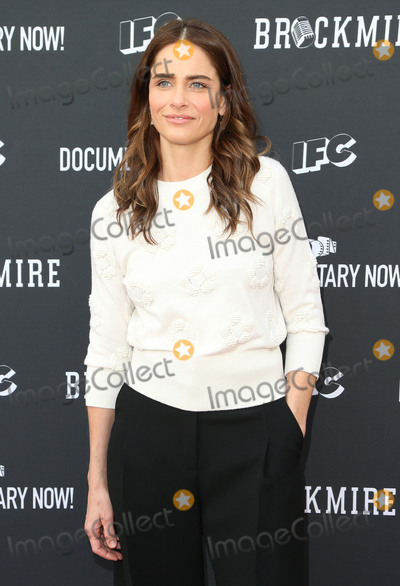 Amanda Peete Photo - 1May 2017 - North Hollywood California - Amanda Peet FYC Event For IFCs Brockmire And Documentary Now held at Saban Media Center at the Television Academy Photo Credit F SadouAdMedia