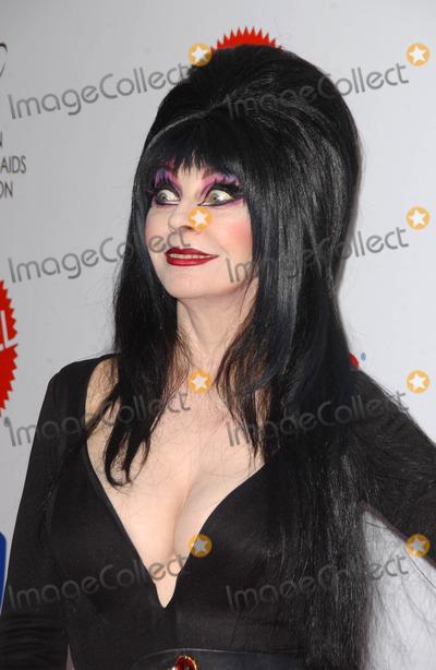 Cassandra Peterson Photo - Cassandra Peterson at Dream Halloween Under The Big Top benefiting the Children Affected by AIDS Foundation Barker Hangar Santa Monica CA 10-27-07