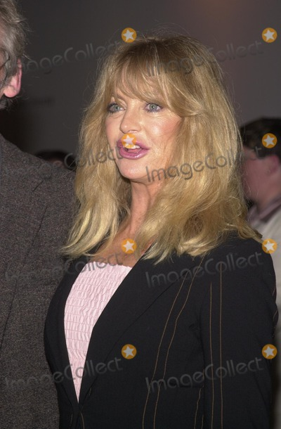 Goldie Hawn Photo - Goldie Hawn at the premiere of the television movie The Matthew Shepard Story in Beverly Hills 03-12-02