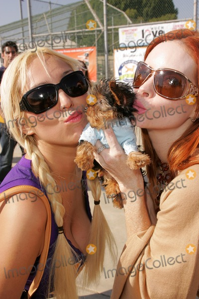 Bow Wow Photo - Mary Carey and Phoebe Priceat the Fourth Annual Much Love Animal Rescue Bow Wow Ween Barrington Dog Park Los Angeles CA 10-30-05