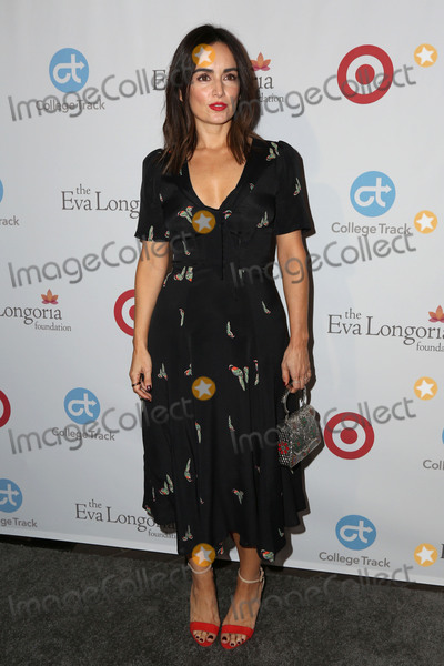 Ana De la reguera Photo - LOS ANGELES - NOV 10  Ana de la Reguera at the 5th Annual Eva Longoria Foundation Dinner at Four Seasons Beverly Hills  on November 10 2016 in Beverly Hills CA