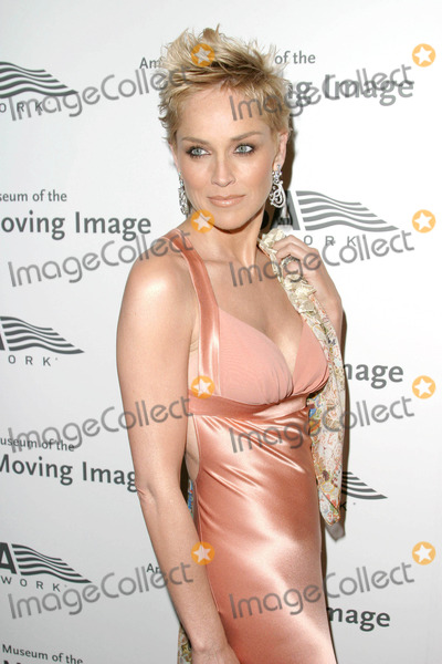 Sharon Stone Photo - Photo by David Greenmanstarmaxinccom200442004Sharon Stone at the American Museum of the Moving Image gala(Waldorf  Astoria Hotel NYC)