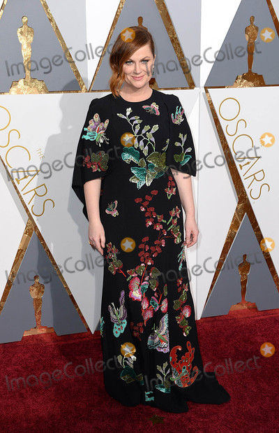 Amy Poehler Photo - Photo by PDstarmaxinccomSTAR MAXCopyright 2016ALL RIGHTS RESERVEDTelephoneFax (212) 995-119622816Amy Poehler at the 88th Annual Academy Awards (Oscars)(Hollywood CA USA)
