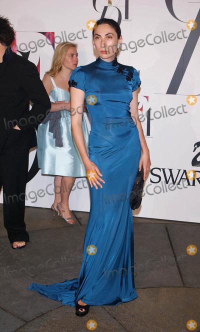 AHN DUONG Photo - Photo by Stephen Truppstarmaxinccom20086208Ahn Duong at the CFDA Fashion Awards(NYC)