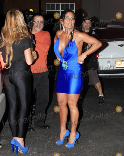 Ana Carolina da Fonseca Photo - Rapper Pitbull (aka Armando Christian Perez) celebrates his 30th birthday at Play nightclub with friends that included Mexican pop singer Cristian Castro former Major League Baseball player Sammy Sosa Brazilian-born actress Ana Carolina da Fonseca who surprised Pitbull when she walked out of a giant faux cake and Latin pop singer and actor Jencarlos Canela  Pitbull appeared to be in a great mood as he kissed and hugged Ana Carolina stuck out his tongue and posed with a comical sculpture of himself Pictured Guests Miami FL 011511
