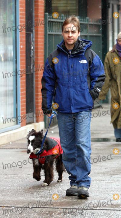 Spott Dog Walking