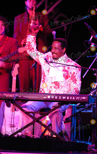 Ike Turner Photo - Ike Turner Performs at Montecarlo Sporting Club  Montecarlo 07042004 Ruscello RobertowmplapresseGlobe Photosinc