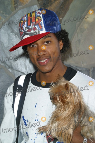 Howie D Photo - Wesley Jonathan and Tee Spence and Dogs - K29422np - Howie D and the Backstreet Boys Lupus Awareness - Universal City Walk Hollywood CA - 03082003 - Photo by Nina PrommerGlobe Photos Inc