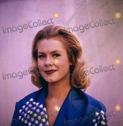 Elizabeth Montgomery Photo - Elizabeth Montgomery Photo by Globe Photos