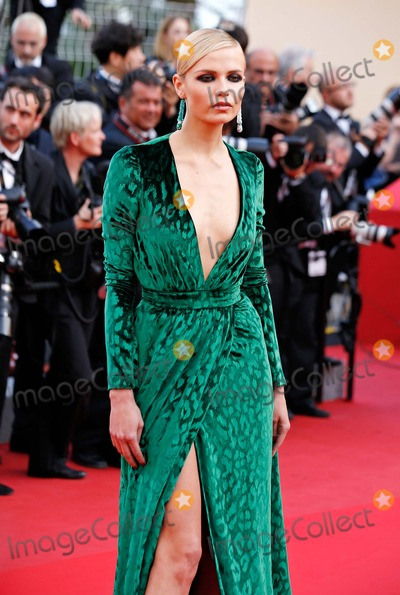 Anna Falchi Photo - Anna Falchi Madagascar 3 Europes Most Wanted Premiere 65 Cannes Film Festival Cannes France May 18 2012 Roger Harvey Photo by Roger Harvey-Globe Photos Inc