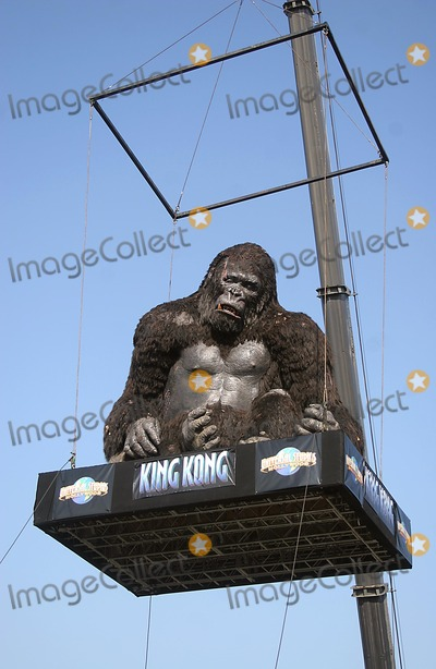 King Kong Photo - 6000-lb 20 Feet Tall King Kong Is Airlifted Into Theme Park at Universal Studios Hollywood in Universal City CA (121405) Photo by Milan-Globe Photos Inc2005 King Kong