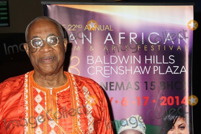 Ayuko Babu Photo - the 22nd Annual Pan African Film  Arts Festival Baldwin Hills Crenshaw Plaza Rave Cinemas 15 Los Angeles CA 02062014 Ayuko Babu - Executive Director of Pan African Film Festival Clinton H WallaceGlobe Photos Inc