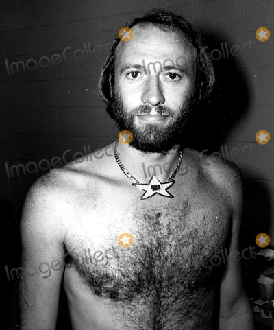 The Bee GEES Photo - The Bee Gees Maurice Gibb 1979 Bob ShermanGlobe Photos Inc Mauricegibbretro