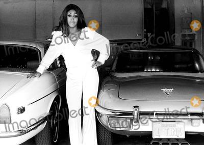 Tina Turner Photo - Tina Turner at Home 26962 Bob LucasGlobe Photos Inc