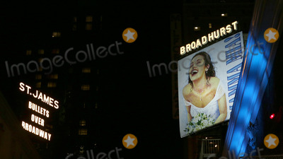 Susan Stroman Photo - Theatre Marquee up in lights for Bullets Over Broadway - The Musical Written by Woody Allan and Directed by Susan Stroman at the St James Theatre on November 19 2013 in New York City The new Musical is sharinging the skyline tith the smash hit Mamma MiaCredit McBrideface to face