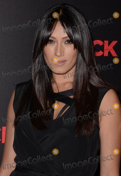 Tehmina Sunny Photo - 07 October  2015 - Hollywood California - Tehmina Sunny  Arrivals the Los Angeles premiere of Liongates Knock Knock held at The TCL Chinese Theater Photo Credit Birdie ThompsonAdMedia