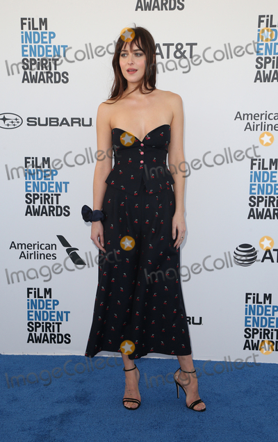 Dakota Johnson Photo - 23 February 2019 - Santa Monica California - Dakota Johnson 2019 Film Independent Spirit Awards - Arrivals held at the Santa Monica Pier Photo Credit Faye SadouAdMedia