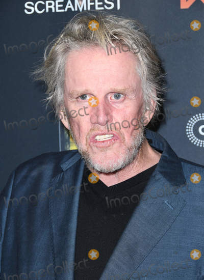 Gary Busey Photo - 22 January 2019 - Hollywood California - Gary Busey Dead Ant  LA Premiere Screening held at TCL Chinese 6 Theaters Photo Credit Birdie ThompsonAdMedia
