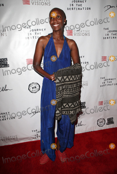 Tiffany Persons Photo - 24 October 2017 - Santa Monica California - Tiffany Persons The Journey is the Destination Los Angeles Premiere held at Laemmle Monica Film Center Photo Credit F SadouAdMedia