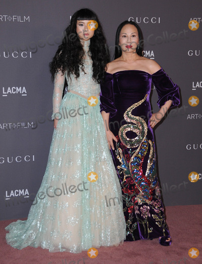 Ava Chow Photo - 04 November  2017 - Los Angeles California - Ava Chow Asia Chow 2017 LACMA ArtFilm Gala held at LACMA in Los Angeles Photo Credit Birdie ThompsonAdMedia