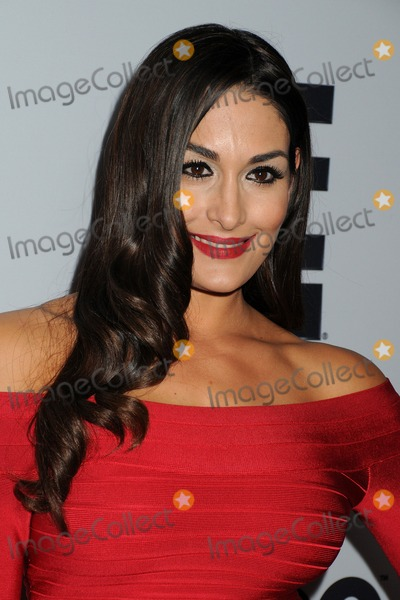 The Bella Twins Photo - 4 December 2013 - Beverly Hills California - Brianna Garcia-Colace The Bella Twins The Make-A-Wish Foundation of Los Angeles 2013 Wishing Well Winter Gala held at the Beverly Wilshire Hotel Photo Credit Byron PurvisAdMedia