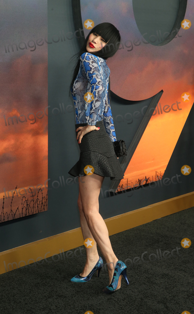 Bai Ling Photo - 18 December 2019 - Hollywood California - Bai Ling The Premiere Of Universal Pictures 1917  held at TCL Chinese Theatre Photo Credit FSAdMedia