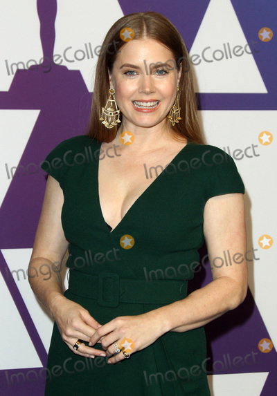 Amy Adams Photo - 04 February 2019 - Los Angeles California - Amy Adams 91st Oscars Nominees Luncheon held at the Beverly Hilton in Beverly Hills Photo Credit AdMedia