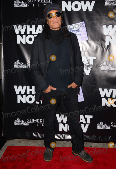 Native Wayne Jobson Photo - 10 March 2015 - Los Angeles California - Native Wayne Jobson  Arrivals for the Los Angeles premiere of What Now held at Laemmle Music Hall Photo Credit Birdie ThompsonAdMedia