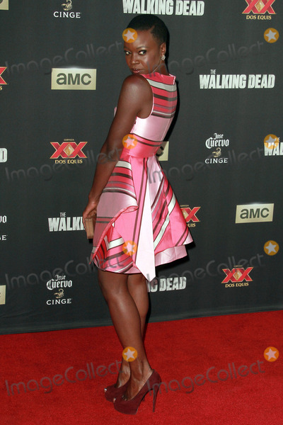 Danai Gurira Photo - 2 October 2014 - Universal City California - Danai Gurira attends AMC celebrates the season five premiere of its hit series The Walking Dead  at the  AMC Universal Citywalk Stadium 19IMAX Photo Credit Theresa BoucheAdMedia
