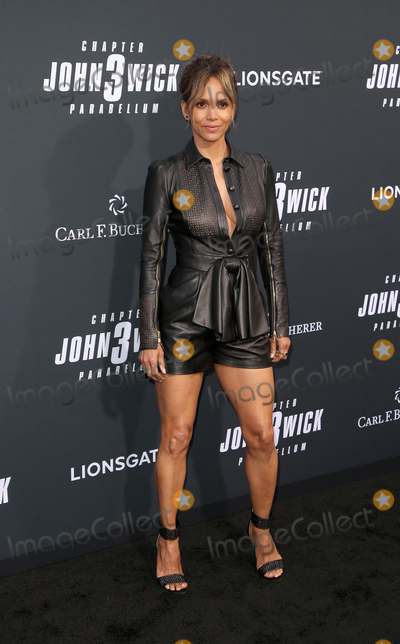Halle Berry Photo - 15 May 2019 - Hollywood California -  Halle Berry Special Screening Of Lionsgates John Wick Chapter 3 - Parabellum held at The TCL Chinese Theatre Photo Credit Faye SadouAdMedia
