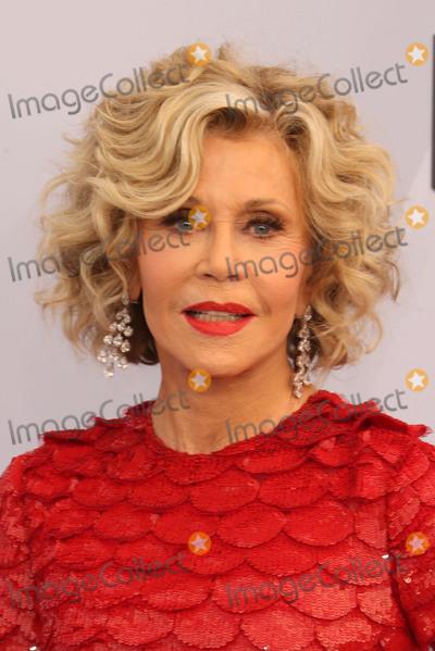 Jane Fonda Photo - 27 January 2019 - Los Angeles California - Jane Fonda 25th Annual Screen Actors Guild Awards held at The Shrine Auditorium Photo Credit Faye SadouAdMedia