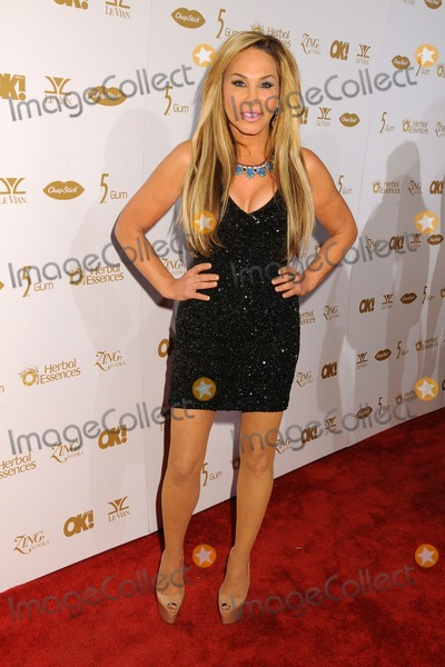 Adrienne Maloof Photo - 24 January 2014 - Hollywood California - Adrienne Maloof OK Magazines Pre-Grammy Event held at Lure Nightclub Photo Credit Byron PurvisAdMedia