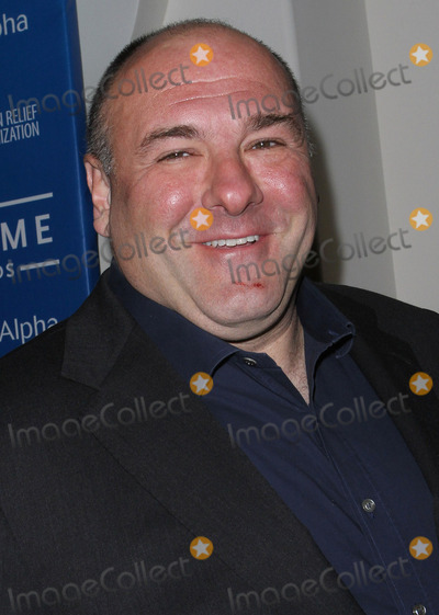 The Sopranos Photo - 19 June 2013 - The Sopranos star James Gandolfini has died at the age of 51 According to multiple sources the three-time Emmy winner suffered a heart attack while on vacation in Italy File Photo 14 January 2012 - Beverly Hills California - James Gandolfini Sean Penn And Friends Cinema For Peace Event Benefiting JP Haitian Relief Organization held at the Montage Hotel Photo Credit Kevan BrooksAdMedia