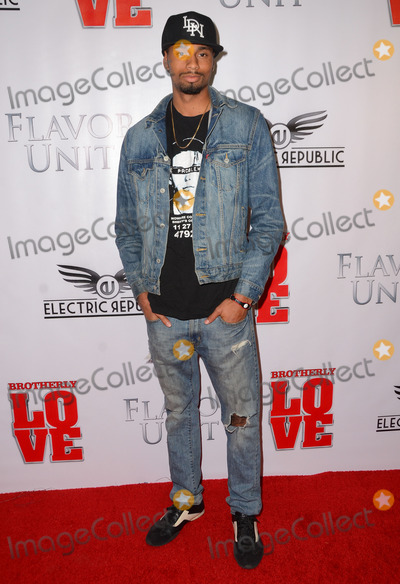 Anthony Kelly Photo - 14 April 2015 - West Hollywood California - Anthony Kelly Arrivals for the Los Angeles premiere of Brotherly Love held at The Pacific Design Center Silver Screen Theater Photo Credit Birdie ThompsonAdMedia
