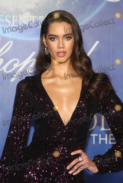 Anna Avila Photo - 6 February 2020 - Beverly Hills California - Anna Avila 2020 Hollywood for the Global Ocean Gala held at Palazzo di Amore Photo Credit FSAdMedia