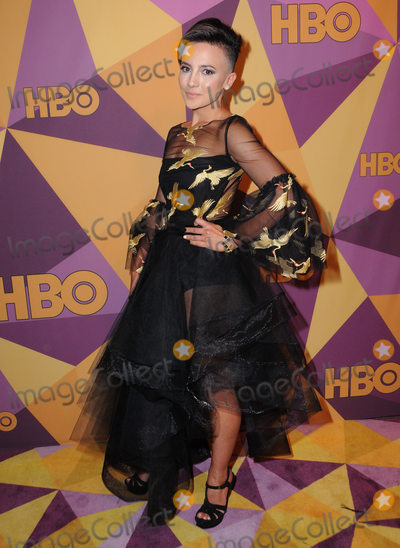 Alin Sumarwata Photo - 07 January 2018 - Beverly Hills California - Alin Sumarwata 2018 HBO Golden Globes After Party held at The Beverly Hilton Hotel in Beverly Hills Photo Credit Birdie ThompsonAdMedia