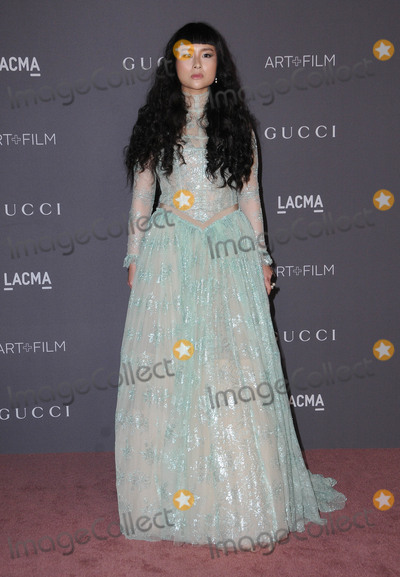 Asia Chow Photo - 04 November  2017 - Los Angeles California - Asia Chow 2017 LACMA ArtFilm Gala held at LACMA in Los Angeles Photo Credit Birdie ThompsonAdMedia