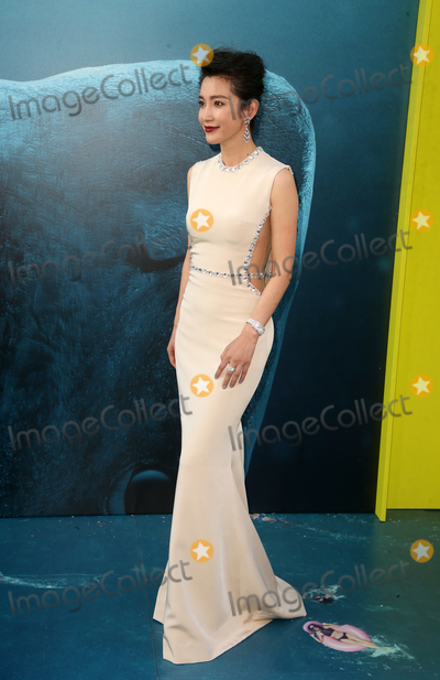 Li Bingbing Photo - 6 August 2018-  Hollywood California - Li Bingbing Warner Bros Pictures And Gravity Pictures Premiere Of The Meg held at TCL Chinese Theatre IMAX Photo Credit Faye SadouAdMedia