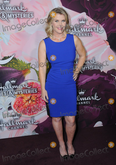Allison Sweeny Photo - 13 January 2018 - Pasadena California - Allison Sweeny Hallmark Channel and Hallmark Movies  Mysteries Winter 2018 TCA Event held at Tournament House Photo Credit Birdie ThompsonAdMedia