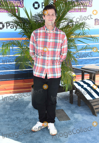 Andy Samberg Photo - 30 June 2018 - Westwood California - Andy Samberg Hotel Transylvania 3 Summer Vacation Los Angeles Premiere held at Regency Village Theater  Photo Credit Birdie ThompsonAdMedia