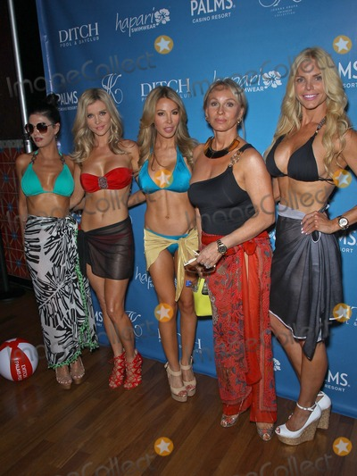 Adriana DeMoura Photo - 08 June 2013 - Las Vegas NV -  Adriana DeMoura Joanna Krupa Lisa Hochstein Lea Black Alexia Echevarria Joanna Krupa hosts Bikini Line Launch at Ditch Saturdays at Palms Pool at Palms Casino ResortPhoto Credit mjtAdMedia