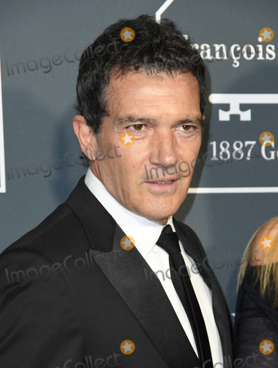 Antonio Banderas Photo - 13 January 2019 - Santa Monica California - Antonio Banderas The 24th Annual Critics Choice Awards held at Barker Hangar Photo Credit Birdie ThompsonAdMedia