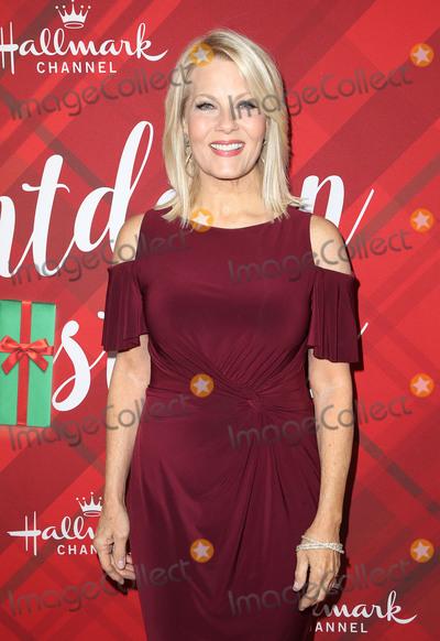 Barbara Niven Photo - 04 December 2017 - Los Angeles California - Barbara Niven Hallmark Channel Screening of Christmas at Holly Lodge held at The Grove Photo Credit F SadouAdMedia