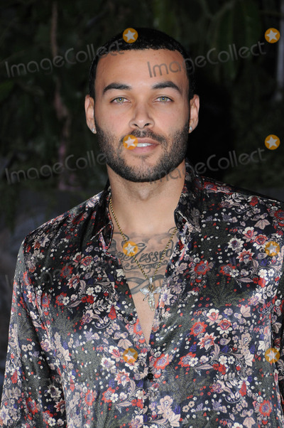 Don Benjamin Photo - 10 December  2017 - Hollywood California - Don Benjamin Jumanji Welcome to the Jungle Los Angeles Premiere held at TCL Chinese Theater in Hollywood Photo Credit Birdie ThompsonAdMedia