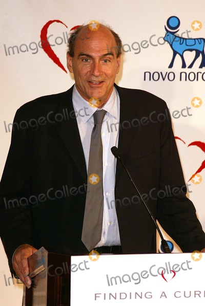 Juvenile Photo - James Taylor at the Novo Nordisk Finding A Cure  A Love Story Gala thrown by the Juvenile Disbetes Research Foundation Beverly Hilton Hotel Beverly Hills CA 05-08-04