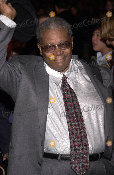 BB King Photo -  BB KING at the premiere of the IMAX film ALL ACCESS Front Row Backstage LIVE at the Universal Studios IMAX Theater Universal City 02-18-01